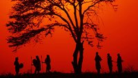 Tribespeople gather under a tree