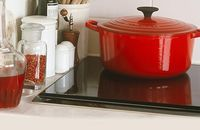 Come Dine With Me: Red Creuset pot