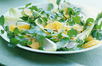 Orange and watercress salad