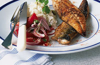 BBQ mackerel with fiery salad