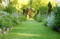 Garden Paths - Ideas & Advice - Channel4 - 4Homes