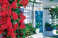garden-courtyard-lg_A4.jpg