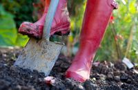 shovel-garden-wellies-lg_A4.jpg