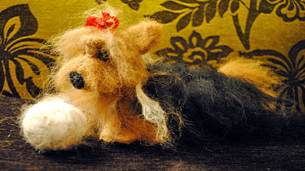 Needlefelt Yorkshire terrier