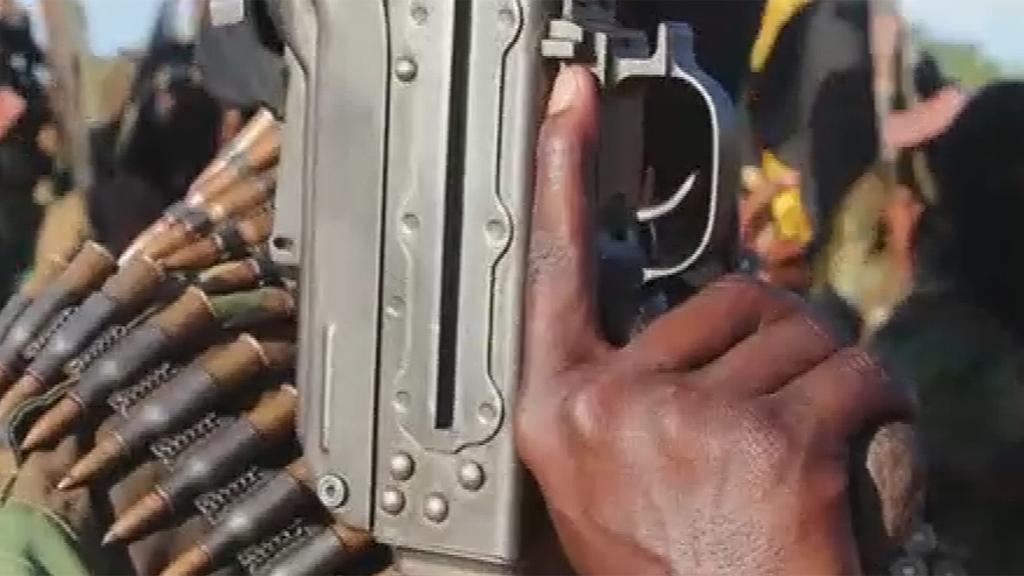 Al-Shabaab militant