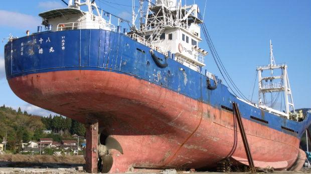 Fighting to fish in Japan's tsunami seas