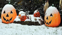 1.	A snow covered Halloween decoration is seen in the US town of Westminster, MD