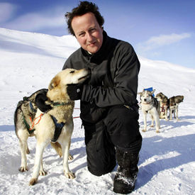David Cameron Hugs a Husky