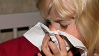 Flu season under way - in time for Christmas (G)