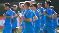 Netherlands players heard monkey chants at a Euro 2012 training session in Poland but the Union of European Football Associations says it was not racial abuse and they will not investigate further.