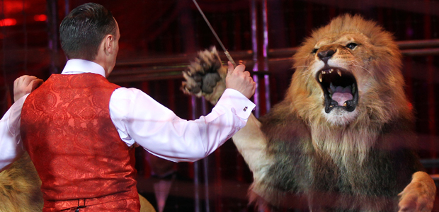 Lion tamer and lion at circus in Moscow