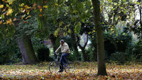 A man cycling past an ash tree in Leicestershire (Reuters)