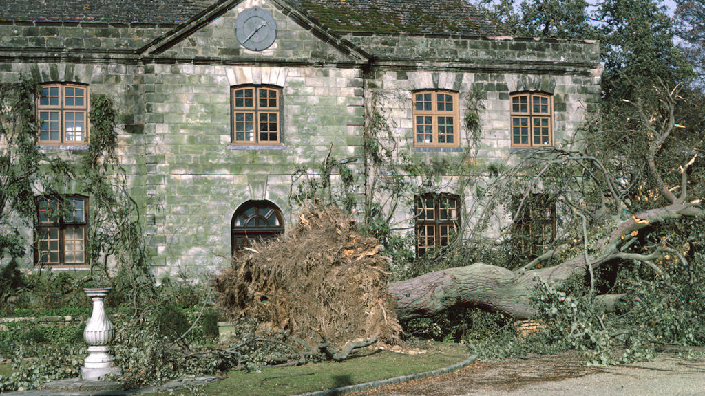 The Great Storm of 1987: 25 years on (Wakehurst Place).