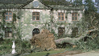 The Great Storm of 1987: 25 years on (Wakehurst Place)