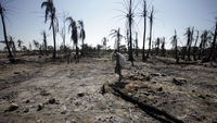 Fierce battles razed parts of Rakhine state (pic: Reuters)