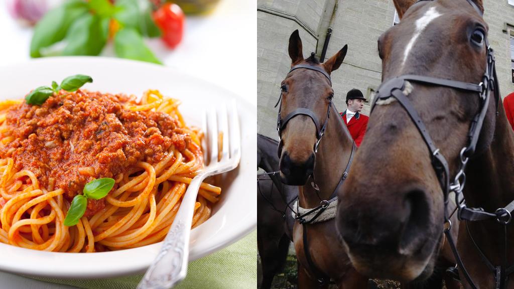 Ban on cheap meat blamed for horsemeat scandal (R)