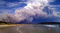 Thousands of people in Tasmania have been left stranded after bushfires swept across large parts (Reuters)