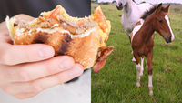 Horse meat that entered the human food chain may have included a carcinogen (Getty)
