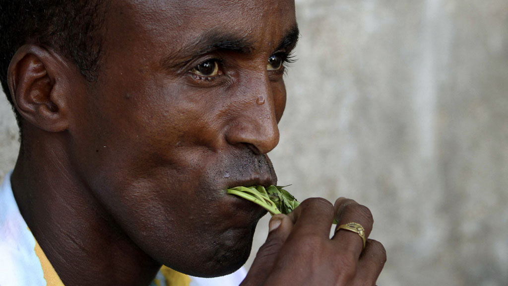 Following a well-targeted campaign, the UK government has banned khat, a stimulant drug widely used by members of east African communities in the UK.