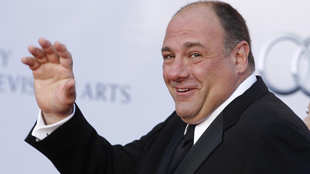 James Gandolfini has died of a suspected heart attack (Image: Reuters)