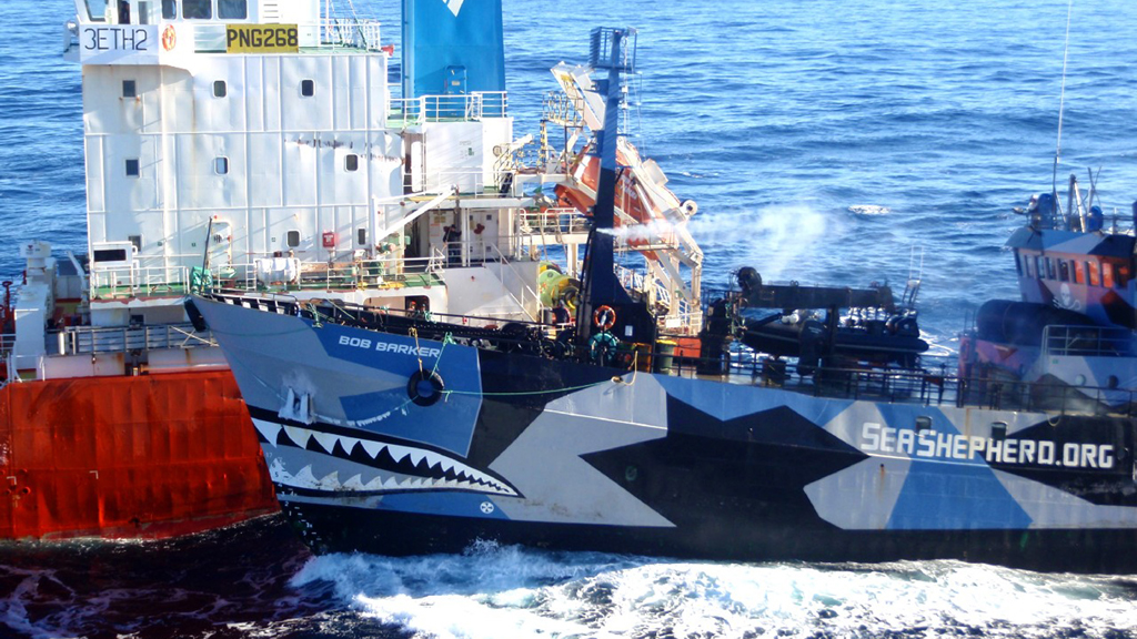 Sea Shepherd ships collide with Japanese whaling fleet (R)