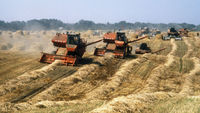 Ukrainian farmland (reuters)