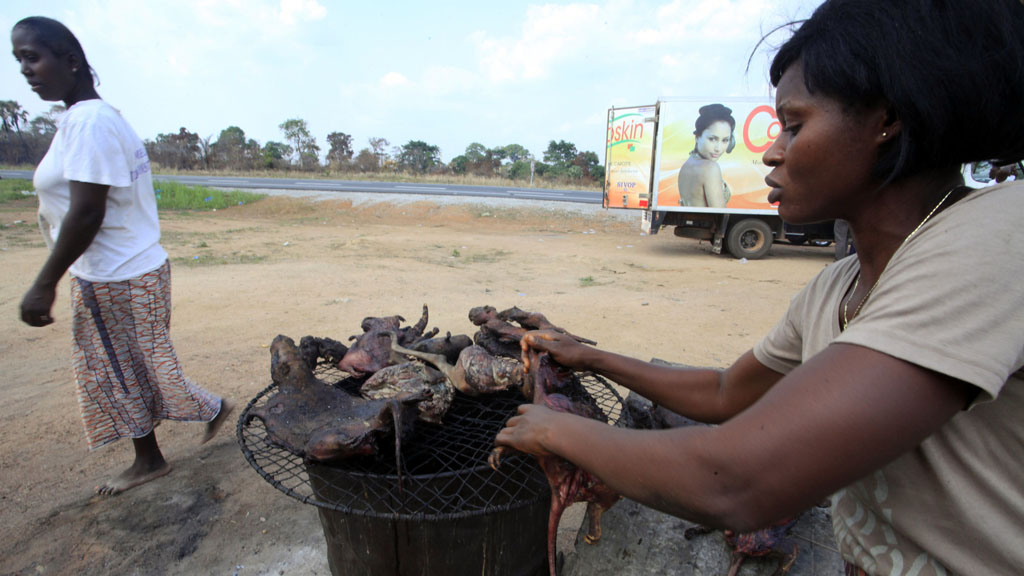 Bush meat on sale in Guinea (Reuters)