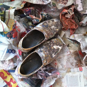 Aero Girl: Rose Wylie's painting shoes.