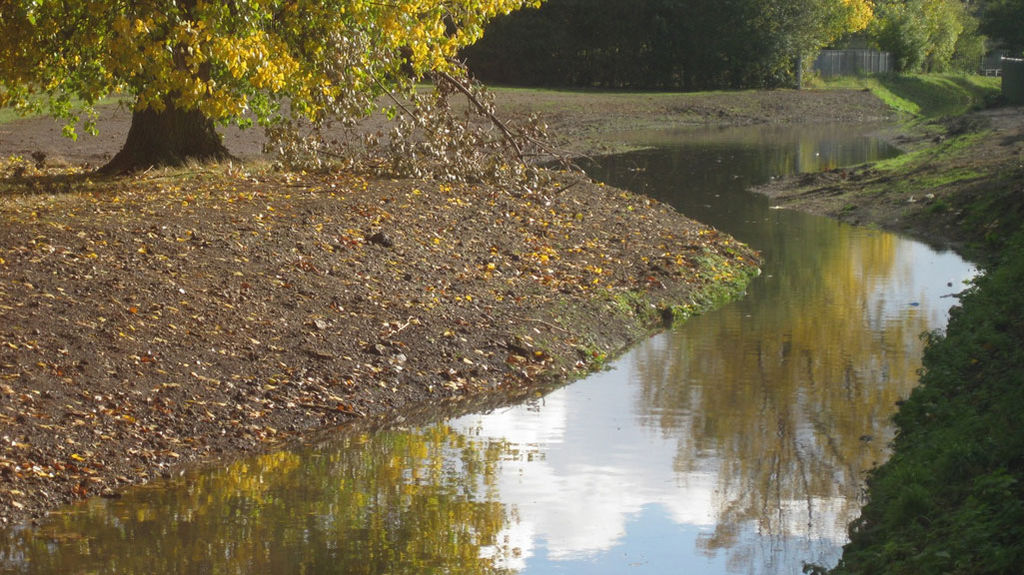 Mayes Brook, Mayesbrook Park