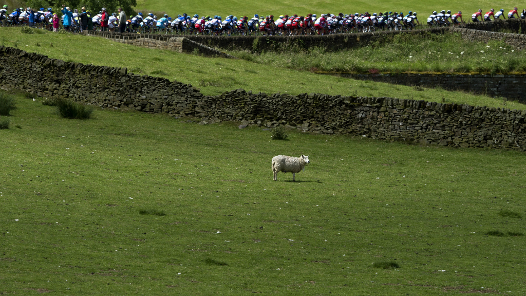 Tour de France: riders sweep through the Yorkshire Dales. (Getty)