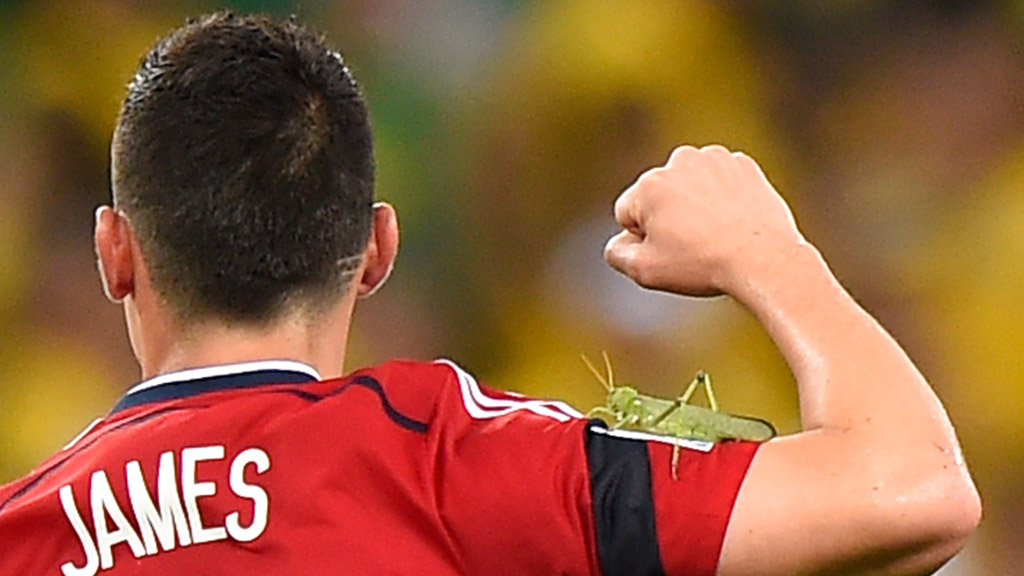 World Cup 2014: Oh look it's Hamez with a locust on his arm. (Getty)