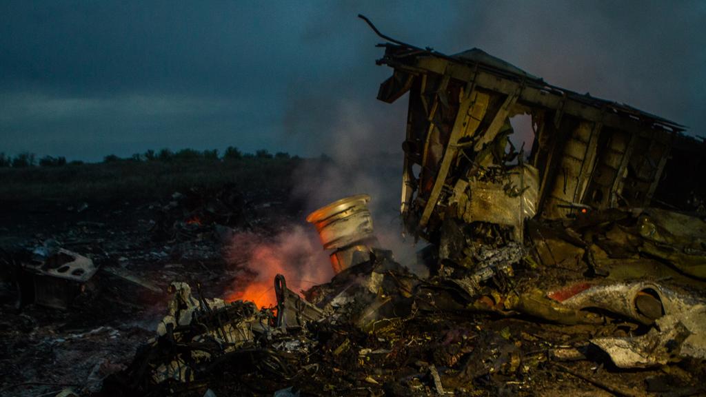 MH17 crash site (Anton Skyba)