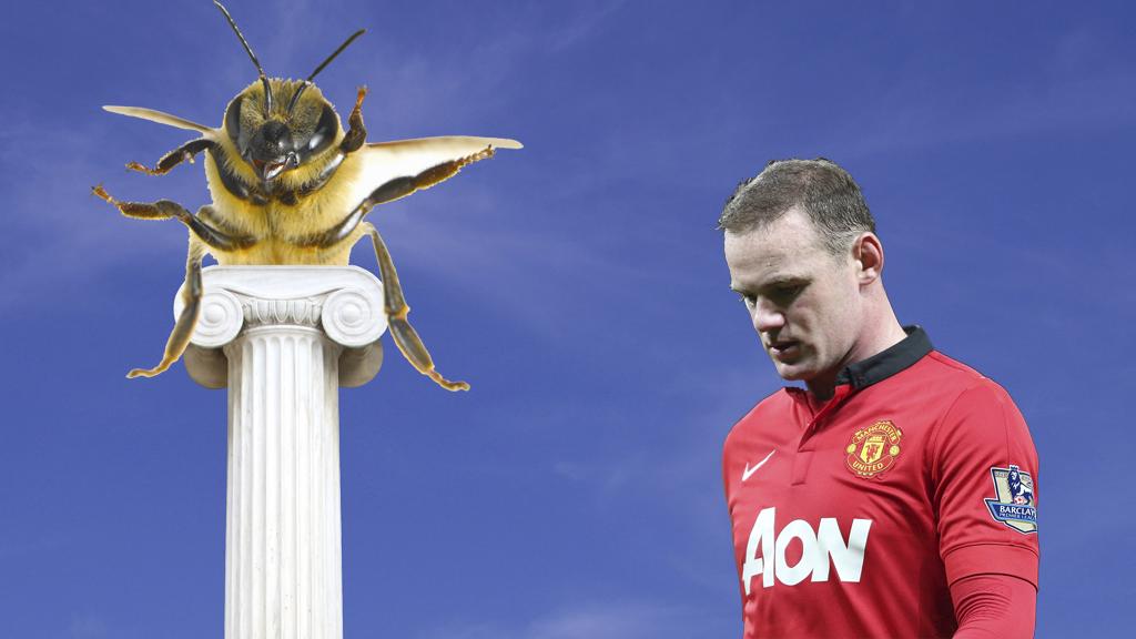 Praise bee