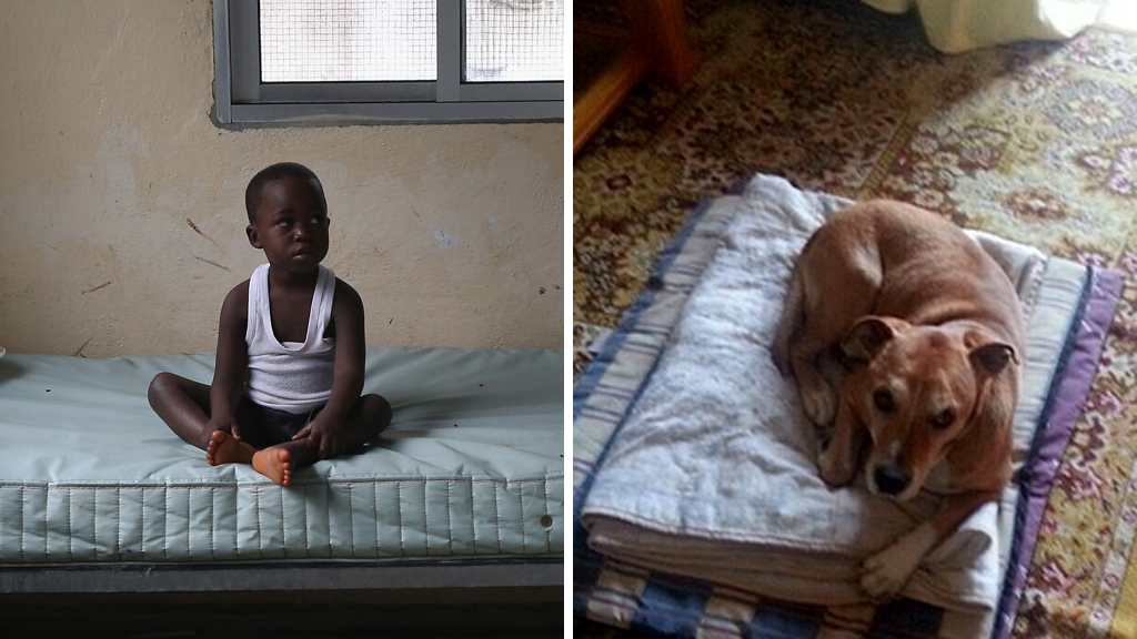 African boy and Excalibur the ebola dog