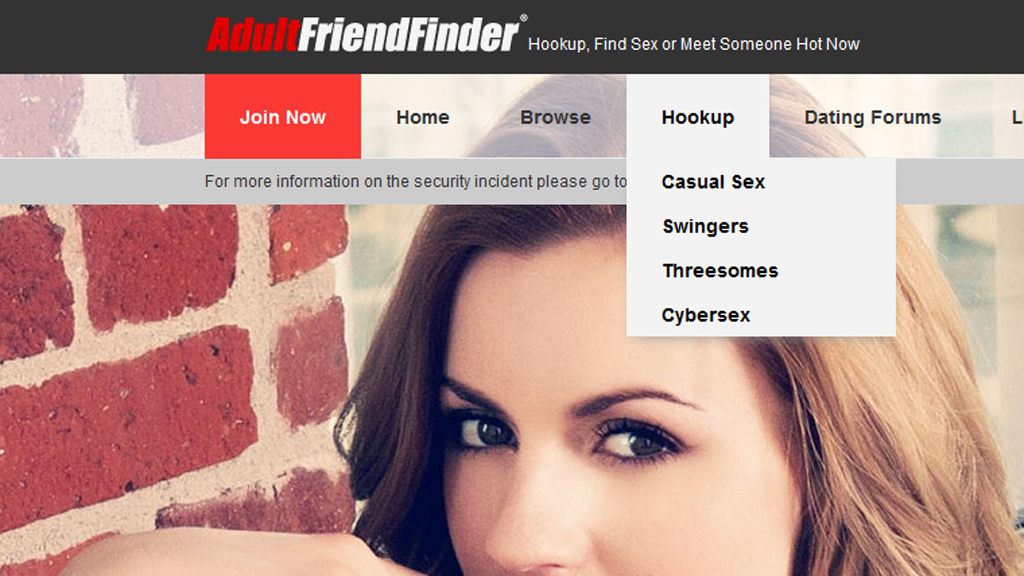 Adult Friend Finder website home page