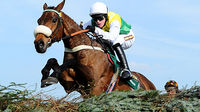Grand National winner Ballabriggs (Image: Getty)