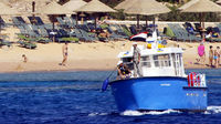 The shark attacks in the Red Sea have left one person dead and three others injured (Reuters)