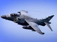 2010 loser: Harrier Jump Jet. (Reuters)