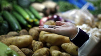 World food prices rose to a record high in December. (Reuters)