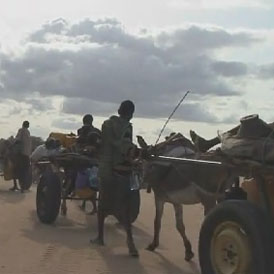 Somali families on the roasd to Dadaab