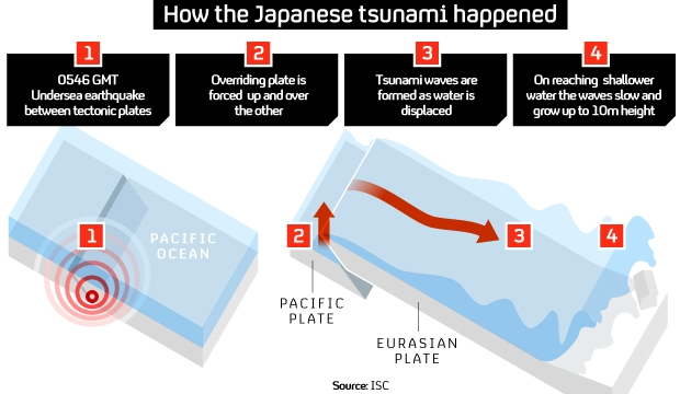how does an earthquake form a tsunami sciencing - 620×360