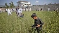 Abbottabad: a boy picks up debris close to bin Laden's former hideout. (Reuters)