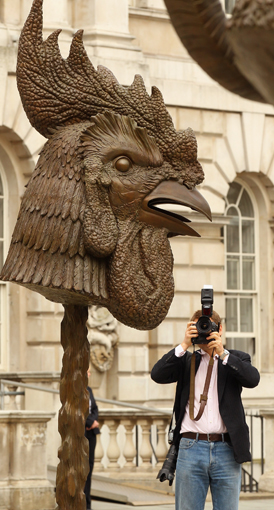 Artists condemn Ai Weiwei detention as exhibitions open