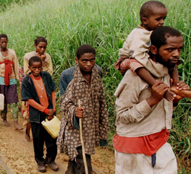 The stories behind the UN report on atrocities in Congo (Reuters)