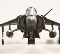 A Harrier jump jet at rest (Reuters)