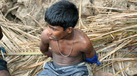 A captured Tamil boy and alleged combatant with the Liberation Tigers of Tamil Eelam (LTTE) inside the 'no-fire zone', May 2009.